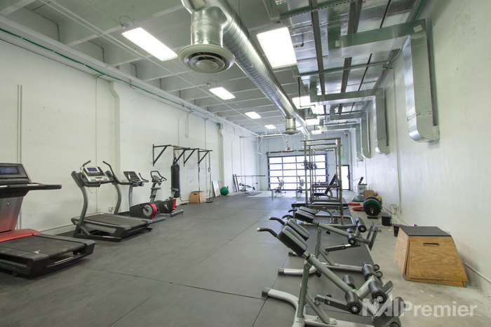 669-gym-web